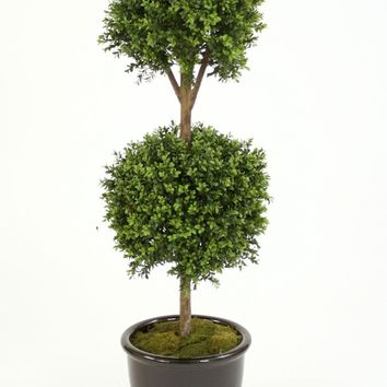 "63"" Boxwood Double Ball Topiary In Glazed Black Stoneware Pot"