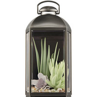 SUCCULENT LANTERN NIGHTLIGHTWallflowers Fragrance Plug