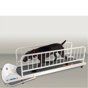 GoPet Large Dog Treadmill