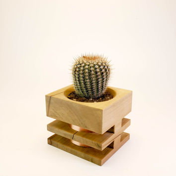 Modern Copper Planter, Unique  Cactus Planter Pot, Small Succulent Planter, Office Planter, Wood Accent