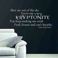One Direction Vinyl Wall Decal Shot Me Out of the Sky My Kryptonite