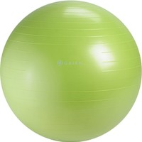 Gaiam Restore Strong Back Stability Ball Kit | DICK'S Sporting Goods