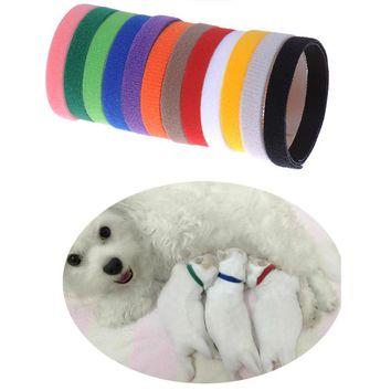 Dog Supplies Collars Soft Breathable Adjustable