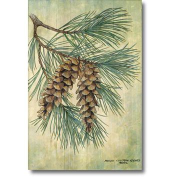 Wood Graphixs PC-WGI-1624 Pine Cone: 16 x 24 Print Reproduction