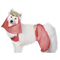 Harem Girl Dog Costume