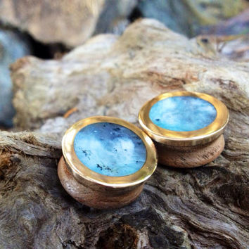 Blue opal, bronze and walnut large plugs--Item#133
