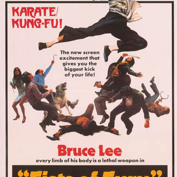 Bruce Lee Fists of Fury Movie Poster 24x35