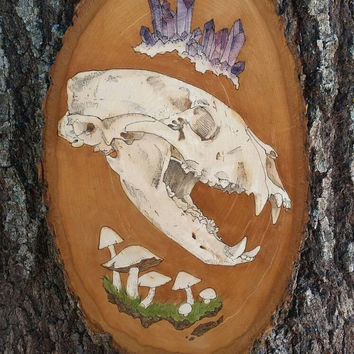 Amythyst Cluster, Black Bear skull, and Mushrooms on wood surface