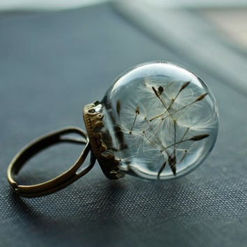 Real dandelion ring , dandelion seed jewelry , good luck ring , dandelion wish , mini terrarium jewellery , botanical jewelry , make a wish