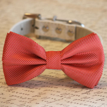 Coral Dog Bow Tie, Coral Wedding Dog Collar, Coral Pet wedding accessory, Wedding ideas