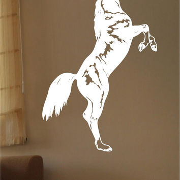 Equestrian Horse Wall Decals Mural Home Decor Vinyl Stickers Decorate Your Bedroom Nursery
