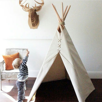 Traditional teepee house inhabit