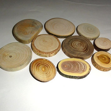 Set of 10 dried mix tree wood slices. Tree discs branches wooden blanks bark logs decor. Round Wood Slices for Craft Hobbies Pyrography DIY