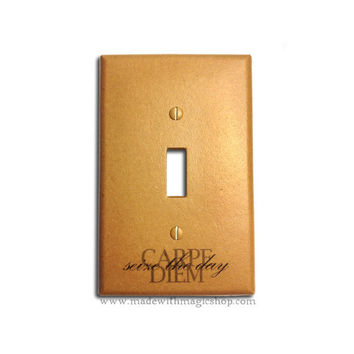 Carpe Diem (Seize The Day) - Handmade Switch Plate