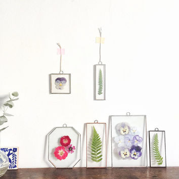 Real press rose flower glass wall art hanging frame