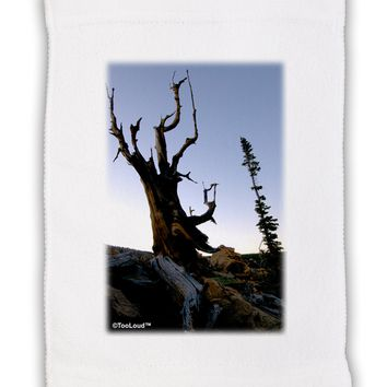 "Colorado Mountain Scenery Micro Terry Sport Towel 11""x18 by TooLoud"