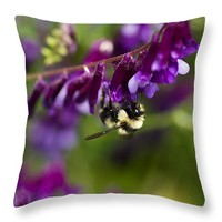 "Fuzzy Pollinator 14"" x 14"" Throw Pillow for Sale by Priya Ghose"