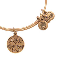 Alex and Ani The Perfect Pair Swan Heart Rafaelian Gold