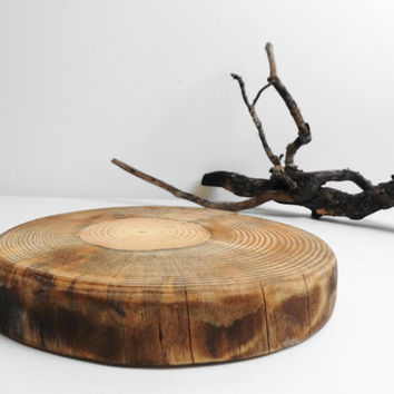Tree Slice, Wood Slice, Cake Stand, Centerpiece, Wedding Decor, Wood Charger, Stump Slice,