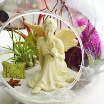 NEW ~ Message from an Angel Terrarium ~ Hope~Faith~Love~Believe ~ Rustic Mailbox ~ Sand dollar ~ 3 Air plants  ~ Glass Round Globe ~ Gift