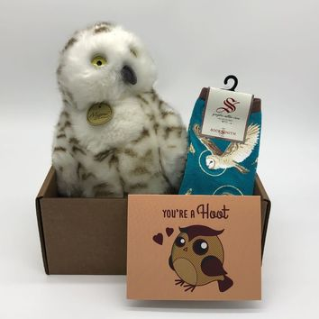 You're a Hoot Owl Package