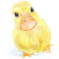 Duckling Watercolor Painting Fine Art Print Giclee Print 8 x 10