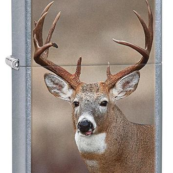 Zippo Buck Deer  Lighter Street Chrome
