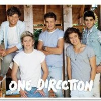 One Direction Summer Poster 36in x 24in (91.5cm X 61cm)