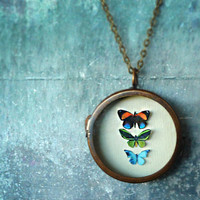 $95.00 Miniature Butterfly Collection Necklace by RenataandJonathan