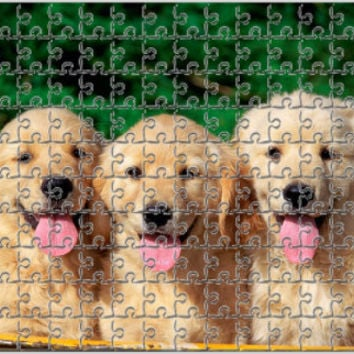 Personalized Photo Puzzle,99 Pieces,130 Pieces,240 Pieces,Perfect personalized gift idea