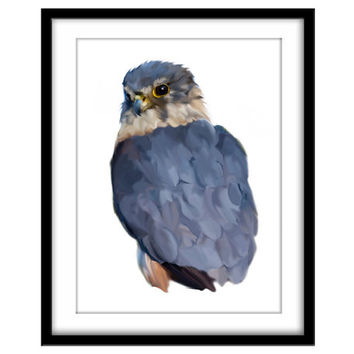 Printable Bird Art, Bird of Prey Instant Download, Merlin Printable Poster, Bird Art, Blue Wall Art
