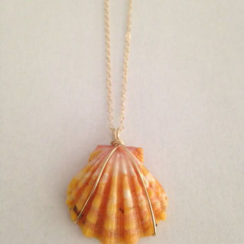 Perfect Orange/White/Pink Sunrise Shell Necklace, Quarter Size, Gold Filled Wire Wrapped Hawaiian Sunrise Shell on Dainty GF Chain
