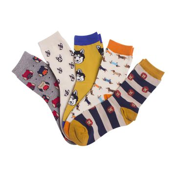 Bats, Elephant, Puppy and Owl Socks Funny Crazy Cool Novelty Cute Fun Funky Colorful