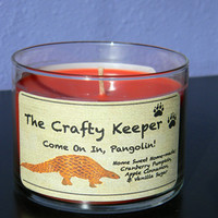 Come On In, Pangolin! Candles for Conservation