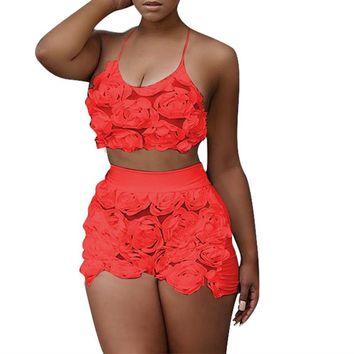 Floral Mesh Lace  Crop Top and Shorts Set