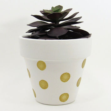 Terracotta Pot, Succulent Planter, Indoor Pot, Succulent Pot, White Planter, Air Plant Holder, Indoor Planter, Flower Pot, Gold Dots