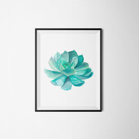 Printable poster, Succulent poster, Printable flower, Wall decor, Wall art, Flower poster, Cactus poster, Kitchen poster, Bathroom poster
