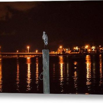 Blue Heron Night - Metal Print