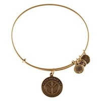 Alex and Ani Turn Peace Up Charm Bangle Bracelet - Rafaelian Gold F...