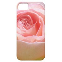 Rose Case iPhone 5 Cases from Zazzle.com