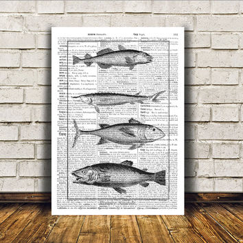 Nautical art Fish poster Modern decor Dictionary print RTA5