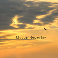 Bird at Sunset, Digital Photography, Instant Download, Nature Wildlife Photo, Setting Sun, Winter in Canada