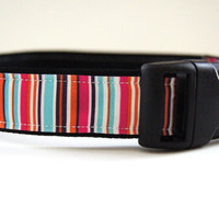 Colorful Striped Dog Collar Adjustable Sizes (M, L, XL)