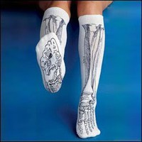 Anatomical Chart Co. - Bone Socks - - White
