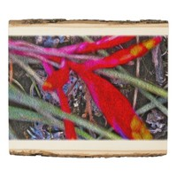 Bromeliad in the Swamp Digital Art Red and Green