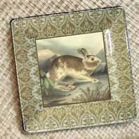 Bunny / Rabbit / Bunny Art / Rabbit Art Print / Decoupage Plate Wall Hanging / Woodland Animal / Woodland Art / Bunny Rabbit Wall Art