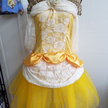 Belle - disney - princess - beauty - and - the  - beast - costume - cosplay - dress - up