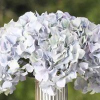 Copy of Hydrangea Stem - Light Blue - Set of Four
