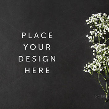 Styled Stock Photography - Product Presentation - Design Mock Up -  Baby Breath Flower with Clean Chalkboard Desktop Background
