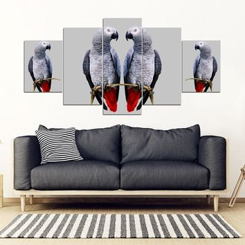 African Grey Parrot (The Grey Parrot ) Print 5 Piece Framed Canvas- Free Shipping